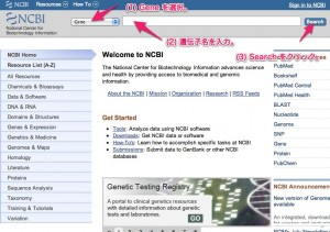 NCBI_Gene_Search