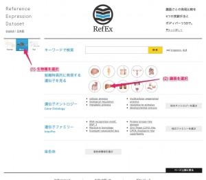 RefEx