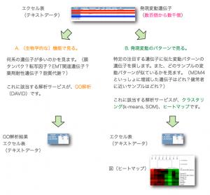 マイクロアレイ解析のフローチャート2: Next step