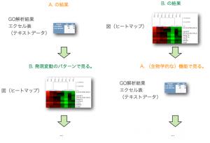 さらに続く解析。A. から B. や、B. の後に A. を行って遺伝子群を絞り込む。