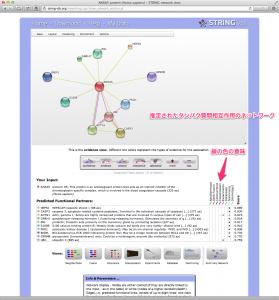 ANXA5 で検索した例。