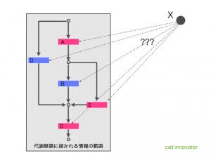 代謝経路に描かれる情報の範囲。