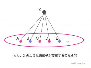 特定の遺伝子群を制御するような遺伝子Xの存在。