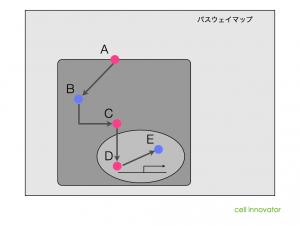 パスウェイ解析のイメージ。矢印で相互作用の情報が示されている。