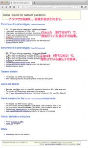 解析結果を表示したレポートの例。