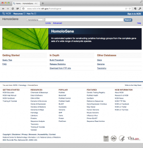 Homologene データベース。