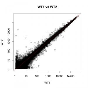 繰り返し実験における散布図の例。