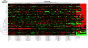CD抗原でクラスタリング、ヒートマップで表示。