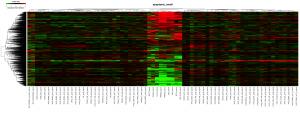 アポトーシス関連遺伝子のクラスタリング結果のヒートマップ。