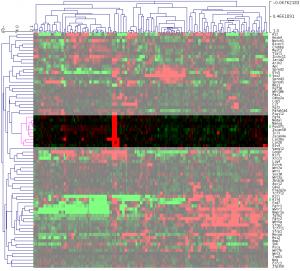 ES細胞だけで発現の高い遺伝子をハイライト。